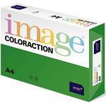 Antalis Coloraction 89721 - Risma di carta colorata, formato A4, 250 fogli, 160 g/m2, colore: Verde intenso (Dublino)