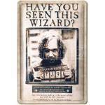 Harry Potter 3D Tin Sign Have You Seen This Wizard 20 X 30 Cm Logoshirt