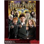 Harry Potter Collage 1000 Pezzi Puzzle Puzzle Aquarius Ent