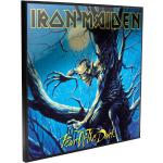 Iron Maiden - Fear of the Dark - Crystal Clear Picture - Poster - Unisex - multicolor