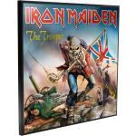 Iron Maiden - The Trooper - Crystal Clear Picture - Poster - Unisex - multicolor