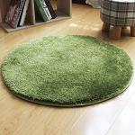 JeogYong Tappeti, Lanuginoso Tappeto Colore Gradiente Acqua Erba Fluff Tappeti Rotondi Usato per Soggiorno o Camera da Letto (Verde, 120cm)
