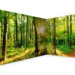 murando Carta da parati d'Angolo Foresta 550x250 cm Fotomurali in TNT Murale alla moda Decorazione da Muro XXL Poster Gigante Design Carta per pareti Paesaggio Natura verde Albero b-B-0383-a-a