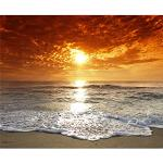 murando Carta da parati Mare Spiaggia Tramonto 400x309 cm Fotomurali in TNT Murale alla moda Decorazione da Muro XXL Poster Gigante Design Carta per pareti Natura Paesaggio 100403-257