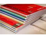 Rambloc Blocchi Spiralati A4 - Quaderno a spirale, Rigo 4mm (Quadretti), Colori Assortiti, 4 Blocchi
