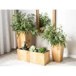 Vaso per piante in legno naturale 24x24x50 cm LARISA