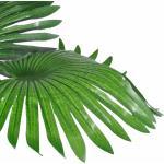 vidaXL Pianta Artificiale Palma Nana con Vaso 180 cm