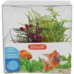 Zolux Decorazione Acquari Mix 4 Piante Box Modello 4
